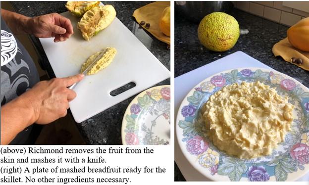 Hawaii breadfruit2